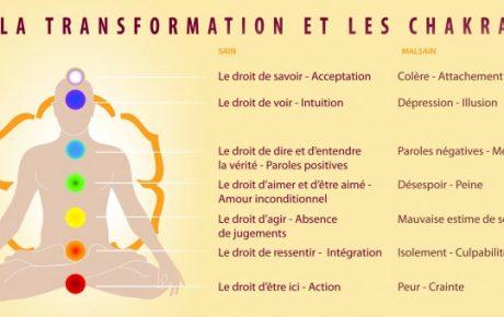 LA TRANSFORMATION ET LES CHAKRAS